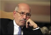 عرب حکام فلسطینی مسلمانوں پر ڈھائے جانے والے مظالم میں برابر کے شریک ہیں، البرادعی
