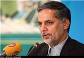 نقوی: ایران برجام را نقض نکرده/ اروپاییها از فرصت 60 روزه استفاده و به تعهدات خود عمل کنند