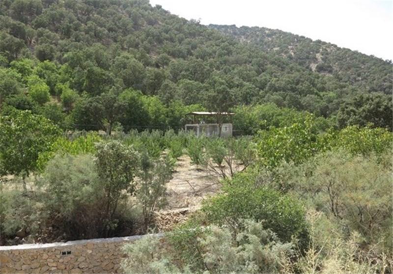 67 هزار متر مربع از اراضی شاهرود به نام دولت سند مالکیت خورد ...
