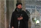 أبو بکر البغدادی یتربع على عرش التنظیمات الإرهابیة فی العراق بعد هلاک أبرز قیاداتها