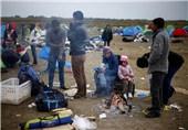 آلمان انتظار حدود 1.5 میلیون پناهنده را در سال جاری دارد