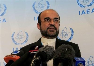رضا نجفی نماینده ایران در آژانس بین المللی انرژی اتمی