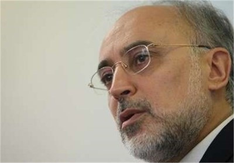 صالحی یتباحث مع وزیر الطاقة الکازاخی حول مرکز خزن الوقود النووی