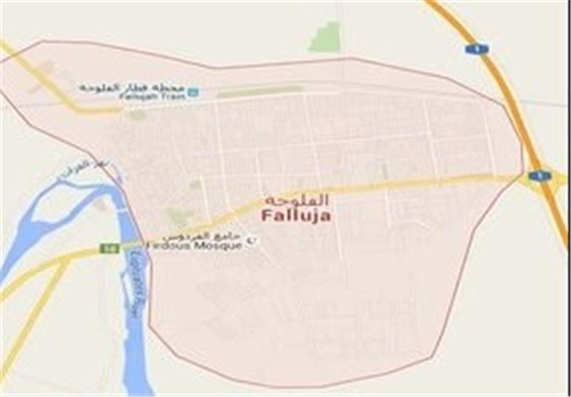 داعشیها در حال فرار به سوی صقلاویه/ الحامضیه در ورودی فلوجه آزاد شد