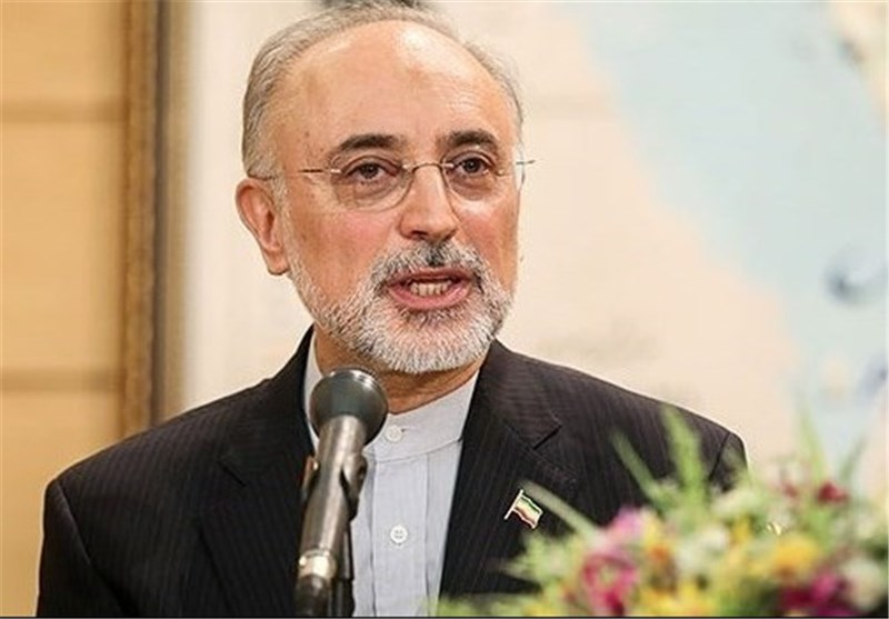 Iran's Salehi Goes to Japan for Nuclear Safety Talks