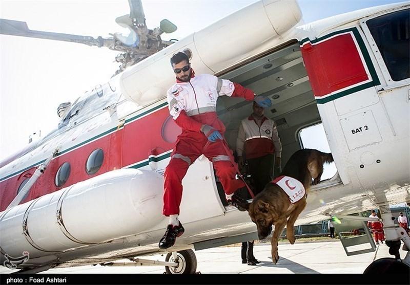 برگزاری نخستین المپیاد سگهای نجات ایرانی