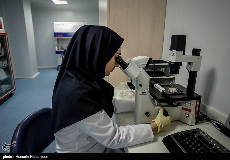میزان ذخیرهسازی خون بند ناف در کردستان افزایش یابد
