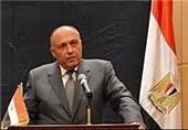 شکری: موقف مصر ثابت من الأزمة السوریة