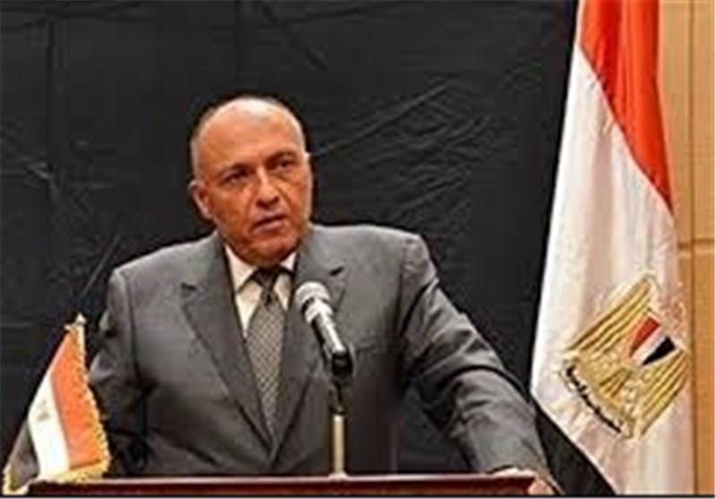 وزیر الخارجیة المصری سامح شکری