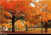 فصل پاییز در نقاط مختلف جهان