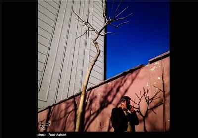 پاییز در خیابان های تهران