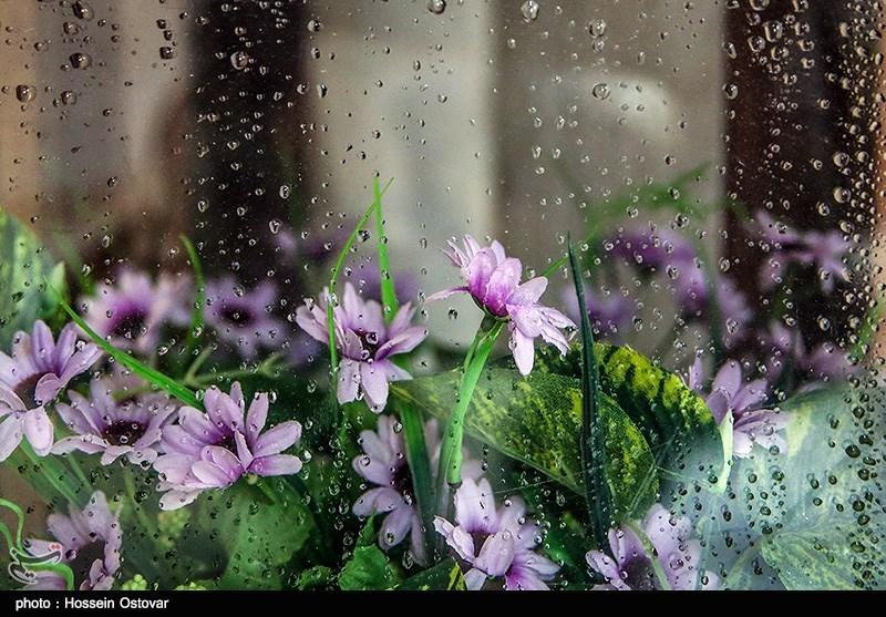 پیش بینی باران یک هفتهای در 10 استان/ هوا 6 درجه خنک میشود