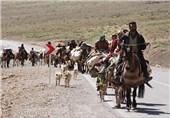 توزیع علوفه یارانهدار بین عشایر; 240 کیلومتر ایلراه شهرستان اردل بازگشایی میشود