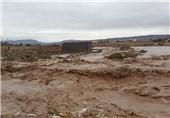 سیلاب شهرستان دلفان 400 میلیارد ریال خسارت به بار آورد