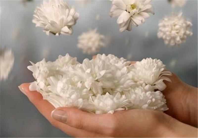 بوییدن و استفاده از عطر یاس برای افراد دچار دردهای مفصلی مفید است