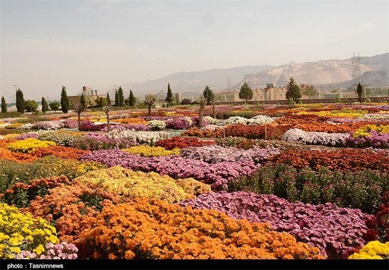 نمایشگاه گل محلات