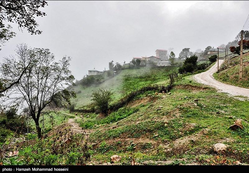 http://newsmedia.tasnimnews.com/Tasnim//Uploaded/Image/1394/08/10/139408101628303666431644.jpg