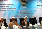 آیة الله الأراکی: کیان الاحتلال الصهیونی وأمریکا یؤججان الخلافات بین المسلمین