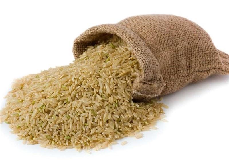 حذف «سموم» در تولید محصولات از اهداف «کشاورزی ارگانیک»