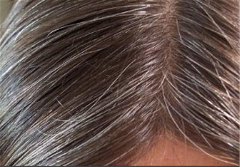 با مصرف این گیاه از سفید شدن موهای خود جلوگیری کنید