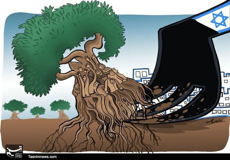 خاطرات یک درخت - 4