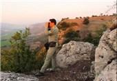 همه عاملان درگیری با محیطبانان در پارک ملی گلستان دستگیر شدند