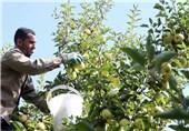 اصلاح الگوی کشت اولویت نخست بخش کشاورزی آذربایجان غربی