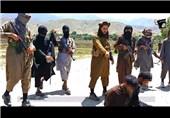 داعش افغانستان طالبان
