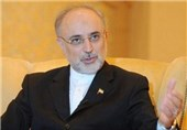 Arak Reactor Document Signed by All JCPOA Parties: Iran's Salehi