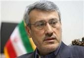 بعیدینژاد: اروپا برنامه همکاری شرکتهای کوچک و متوسط با ایران را تدوین میکند