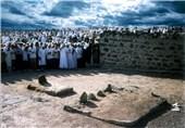 سبط المصطفى الإمام الحسن المجتبى (ع) فی ذکرى استشهاده