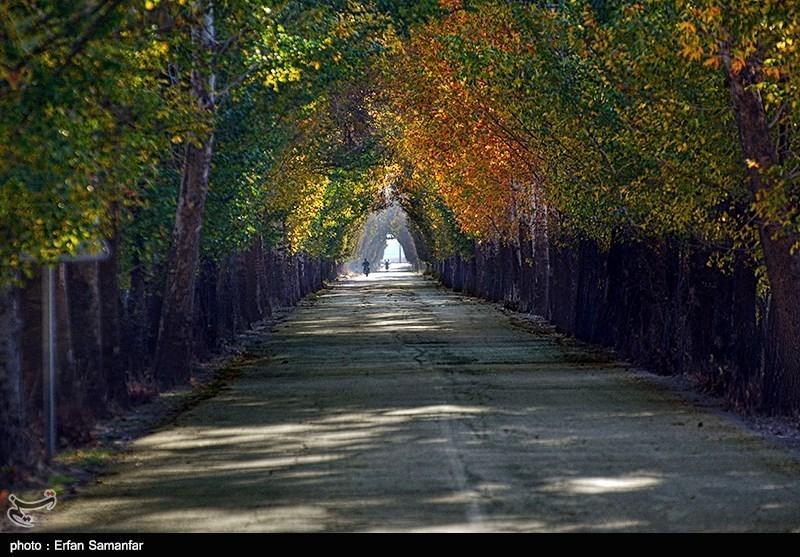 پاییز در منطقه سیدان فارس