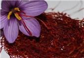 تولید نوشیدنی انرژیزا از زعفران