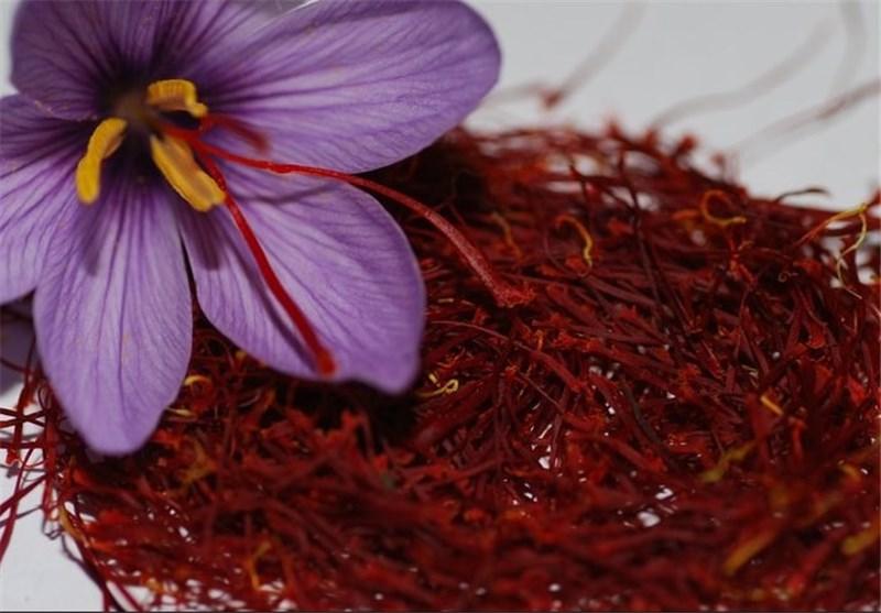 پس از 15سال آمریکا خریدار زعفران ایرانی