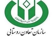 معاون وزیر جهاد کشاورزی با خصوصی سازی تعاون روستایی مخالفت کرد