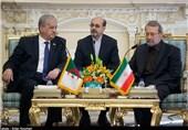 Iran's Larijani Slams West's Double-Standard Human Rights Policies
