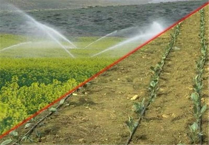 60 هزار هکتار اراضی کشاورزی استان تهران مجهز به سیستم آبیاری نوین شد
