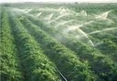 سمنان| طرحهای بهینهسازی مصرف آب در بخش کشاورزی اجرایی میشود