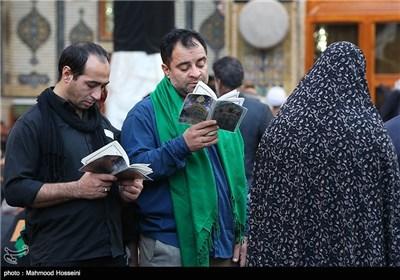 زائران اربعین حسینی در حرم حضرت علی علیه السلام