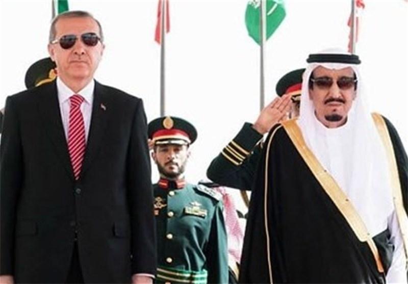 "محلل سیاسی تونسی: ترکیا وقطر والسعودیة ""محور الشر الحقیقی"" فی تونس"