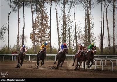 هفته دهم مسابقات اسبدوانی پاییزه کشور در گنبدکاووس