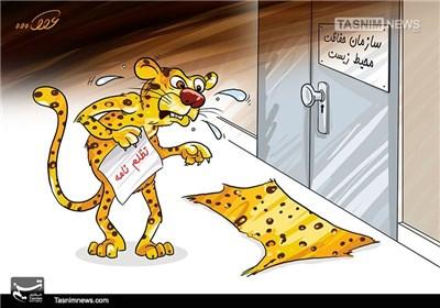 کاریکاتور/ تظلم نامه!!!