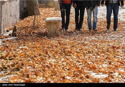 پاییز در محلات