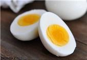شیوع بیماریهای تنفسی در مرغداریها علت گرانی تخممرغ است