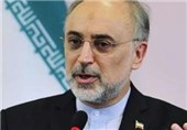 US in State of 'Political Confusion' over JCPOA: Iran's Salehi
