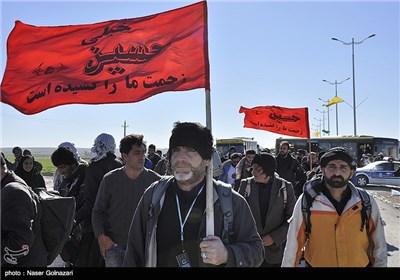 استمرار عودة عشاق سید الشهداء (ع) الى ایران