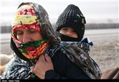 موشنگرافی زائرین پیاده امام رضا(ع) + فیلم