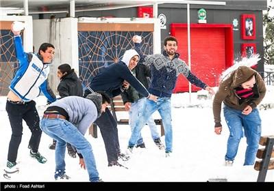Snow Blankets Iranian Capital