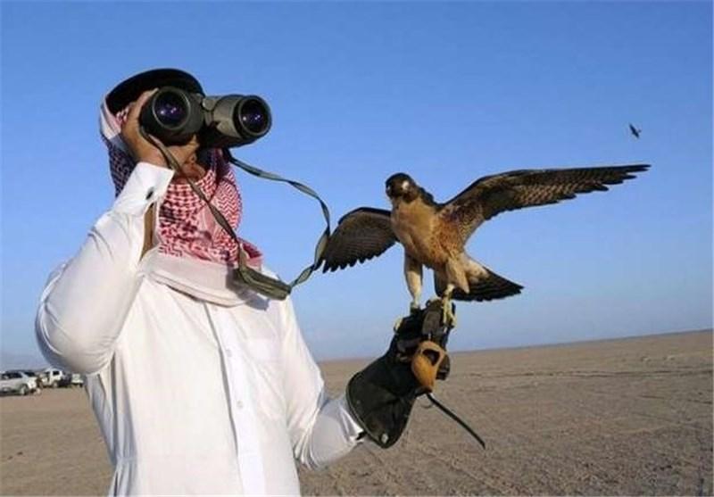 غیر قانونی شکار کے لیے آئے عرب شہزادوں کی سیکورٹی فورسز پر فائرنگ، 4 شہزادے گرفتار