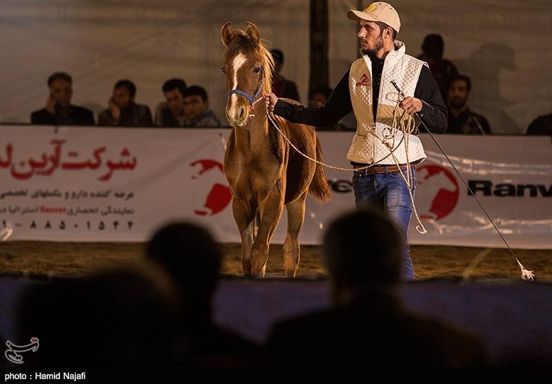 http://newsmedia.tasnimnews.com/Tasnim/Uploaded/Image/1394/09/27/139409271302082026730634.jpg
